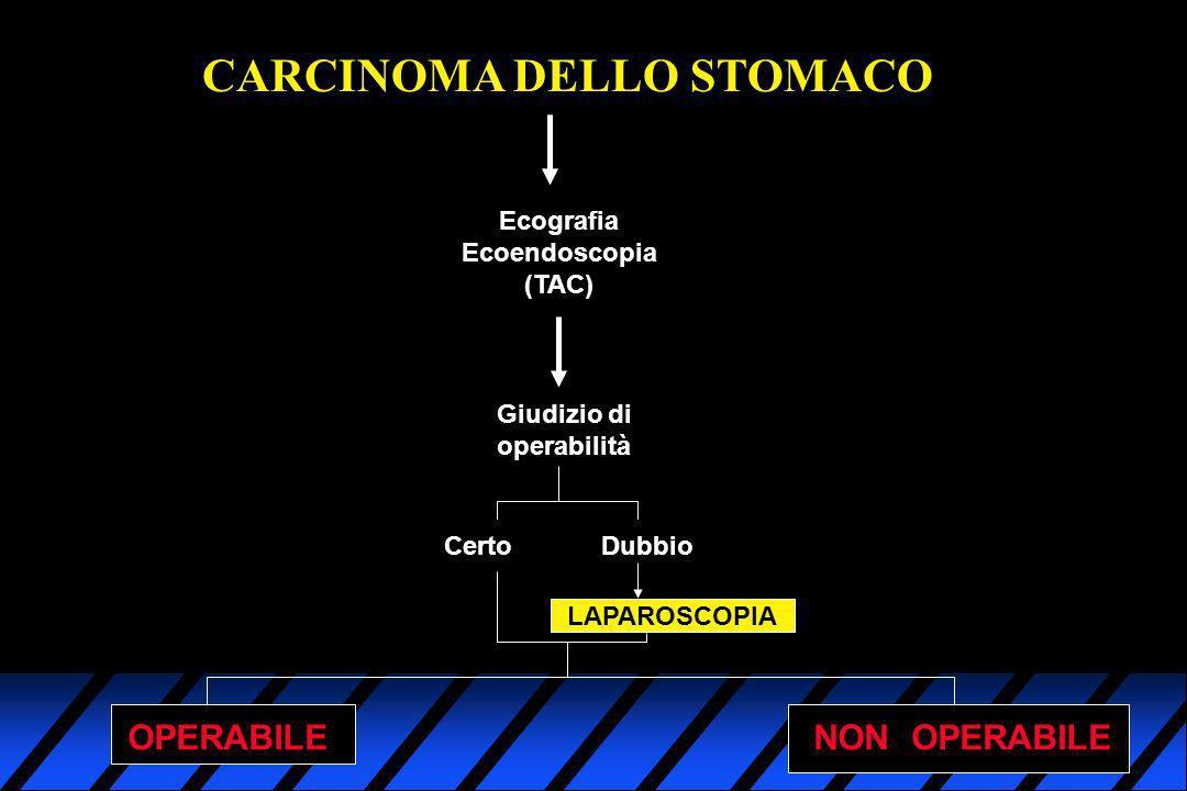 CARCINOMA DELLO STOMACO Ecografia Ecoendoscopia (TAC) Giudizio di operabilità Certo Dubbio LAPAROSCOPIA OPERABILENON OPERABILE