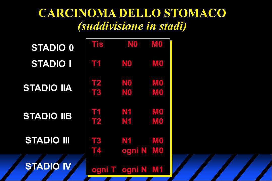 CARCINOMA DELLO STOMACO (suddivisione in stadi) STADIO 0 Tis N0 M0 T1N0M0 T2N0M0 T3N0M0 T1N1M0 T2N1M0 T3N1M0 T4ogni NM0 ogni Togni NM1 STADIO I STADIO