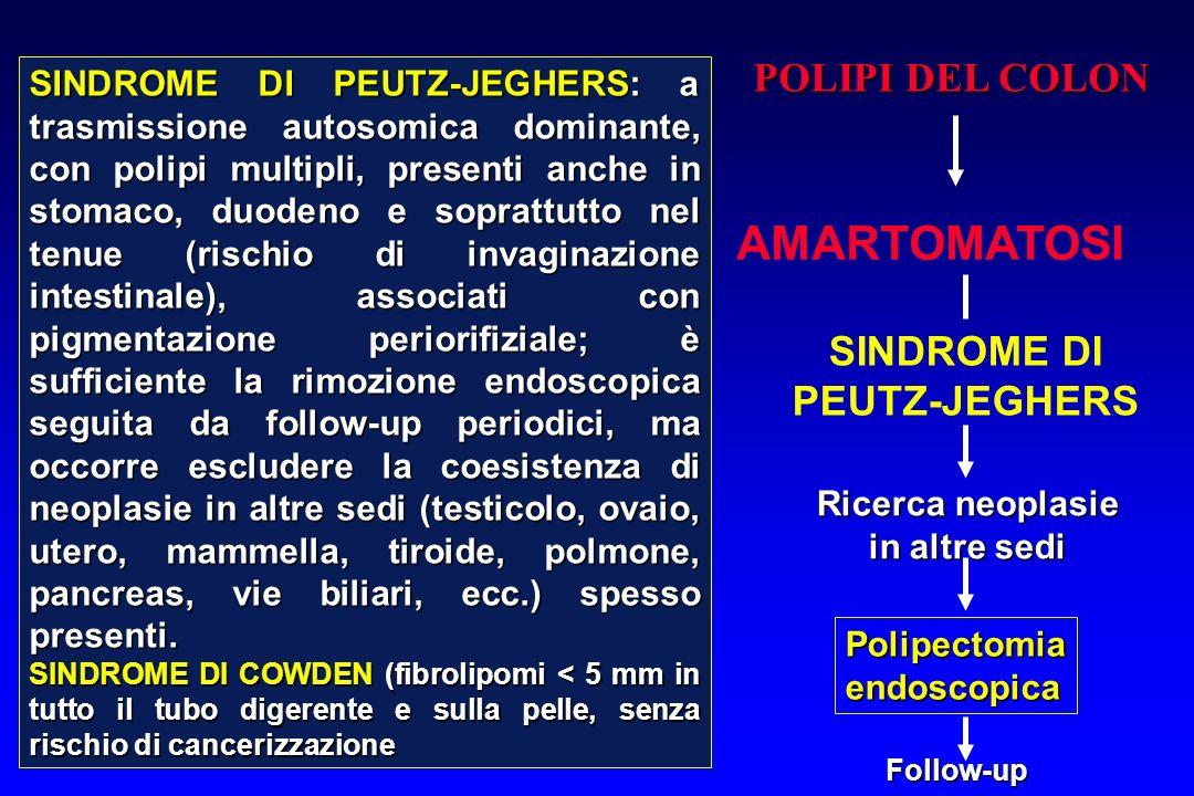 POLIPI DEL COLON AMARTOMATOSI SINDROME DI PEUTZ-JEGHERS Ricerca neoplasie in altre sedi Polipectomiaendoscopica Follow-up SINDROME DI PEUTZ-JEGHERS: a