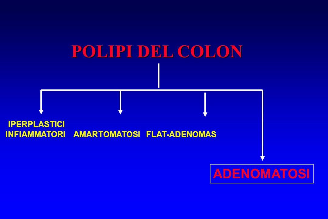 POLIPI DEL COLON IPERPLASTICI INFIAMMATORI AMARTOMATOSI FLAT-ADENOMAS ADENOMATOSI