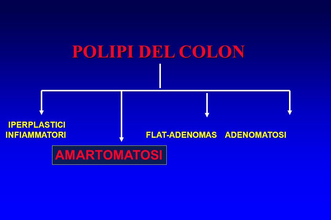 POLIPI DEL COLON IPERPLASTICI INFIAMMATORI FLAT-ADENOMAS ADENOMATOSI AMARTOMATOSI