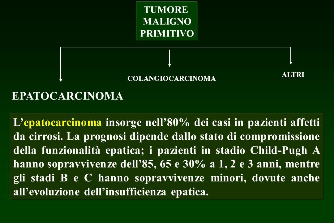TUMORE MALIGNO PRIMITIVO EPATOCARCINOMA COLANGIOCARCINOMA ALTRI Lepatocarcinoma insorge nell80% dei casi in pazienti affetti da cirrosi. La prognosi d