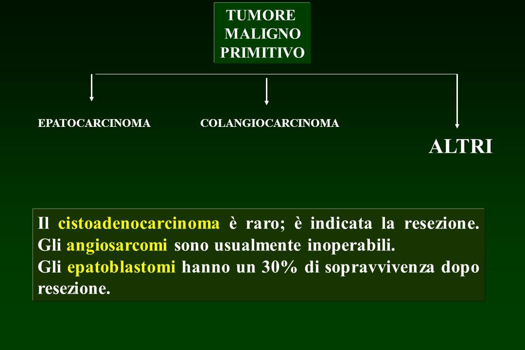 TUMORE MALIGNO PRIMITIVO EPATOCARCINOMA COLANGIOCARCINOMA ALTRI Il cistoadenocarcinoma è raro; è indicata la resezione. Gli angiosarcomi sono usualmen