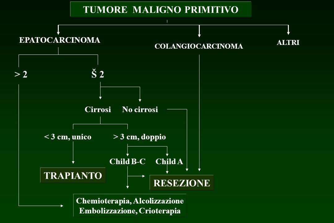 TUMORE MALIGNO PRIMITIVO EPATOCARCINOMA COLANGIOCARCINOMA ALTRI > 2Š 2 CirrosiNo cirrosi < 3 cm, unico> 3 cm, doppio TRAPIANTO Child B-CChild A RESEZI