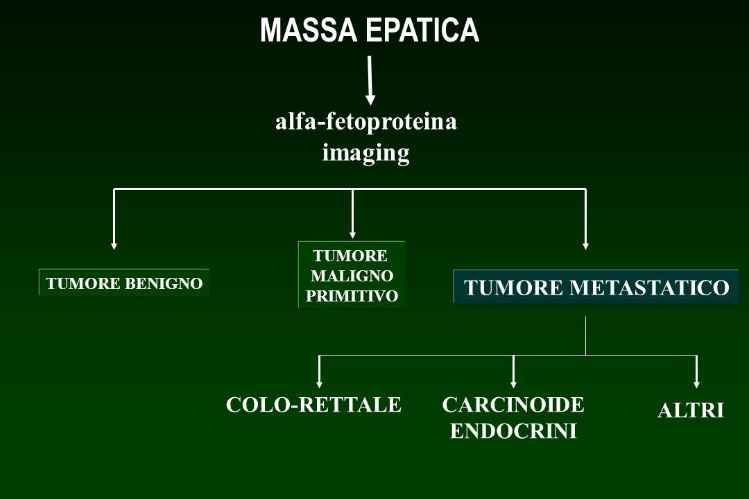 MASSA EPATICA alfa-fetoproteina imaging TUMORE BENIGNO TUMORE MALIGNO PRIMITIVO TUMORE METASTATICO COLO-RETTALECARCINOIDE ENDOCRINI ALTRI