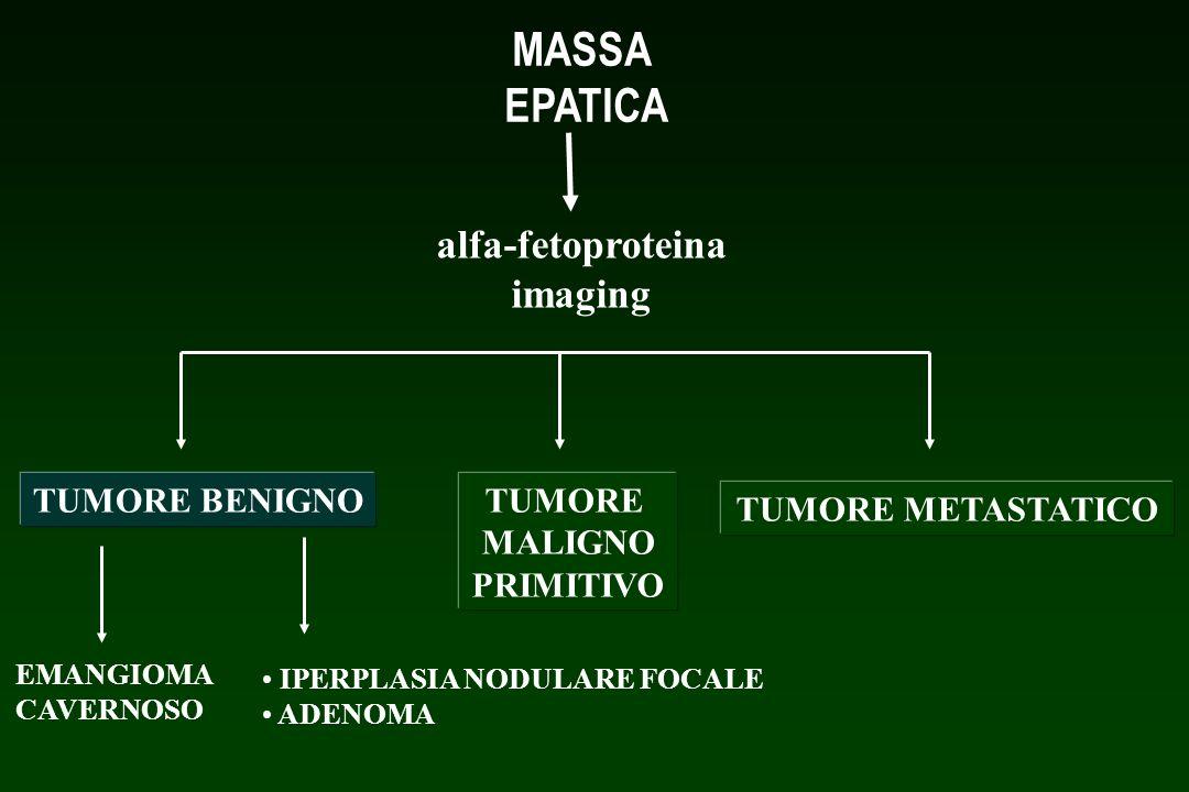MASSA EPATICA alfa-fetoproteina imaging TUMORE BENIGNOTUMORE MALIGNO PRIMITIVO TUMORE METASTATICO EMANGIOMA CAVERNOSO IPERPLASIA NODULARE FOCALE ADENO