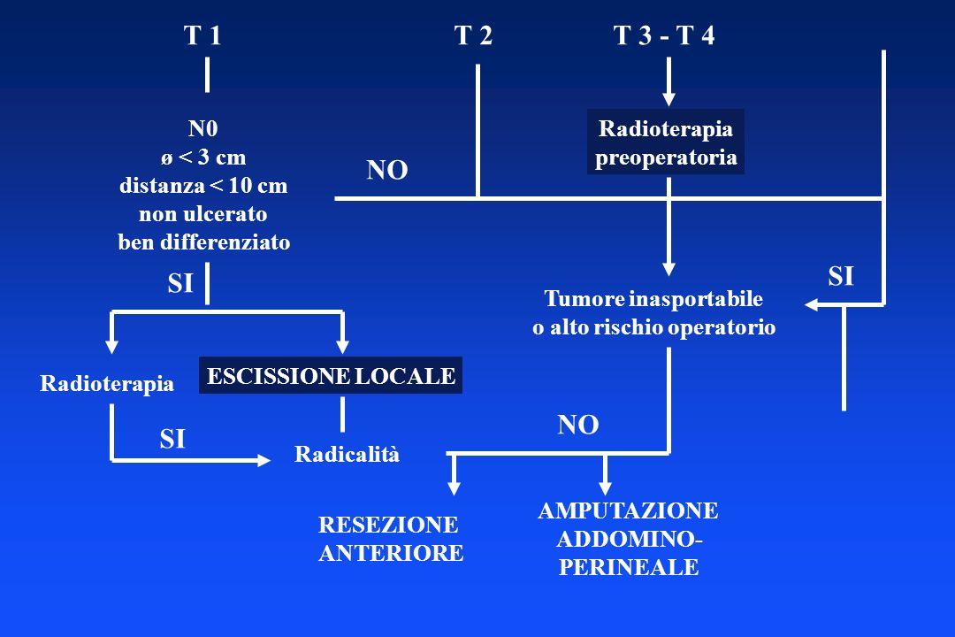 T 1T 2T 3 - T 4 N0 ø < 3 cm distanza < 10 cm non ulcerato ben differenziato SI Radioterapia ESCISSIONE LOCALE Radioterapia preoperatoria Tumore inaspo