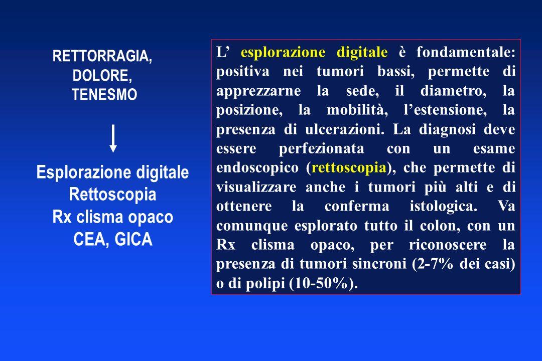 CARCINOMA DELLANO < 2/3 circonferenza > 2/3 circonferenza Chemioradioterapia Curativa (75 %) Non curativa Resezione addomino- perineale Resezione addominale Linfonodi inguinali positivi Chemioradio terapia Dissezione linfonodale inguinale Linfonodi inguinali negativi
