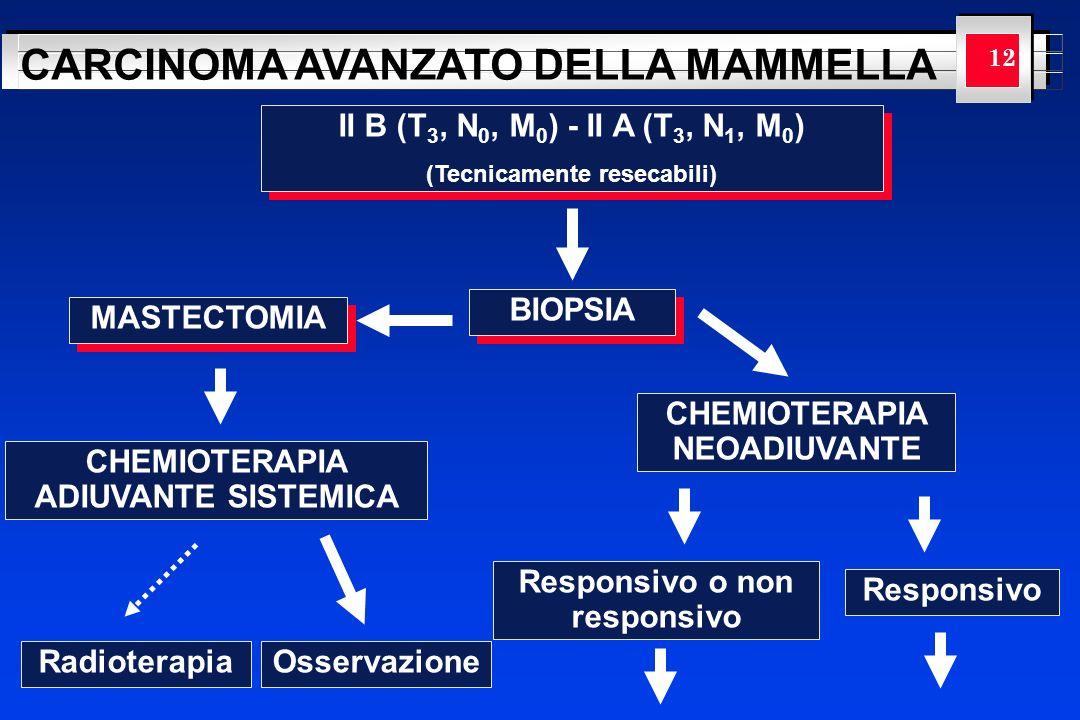YOUR LOGO HERE CARCINOMA AVANZATO DELLA MAMMELLA 12 II B (T 3, N 0, M 0 ) - II A (T 3, N 1, M 0 ) (Tecnicamente resecabili) II B (T 3, N 0, M 0 ) - II