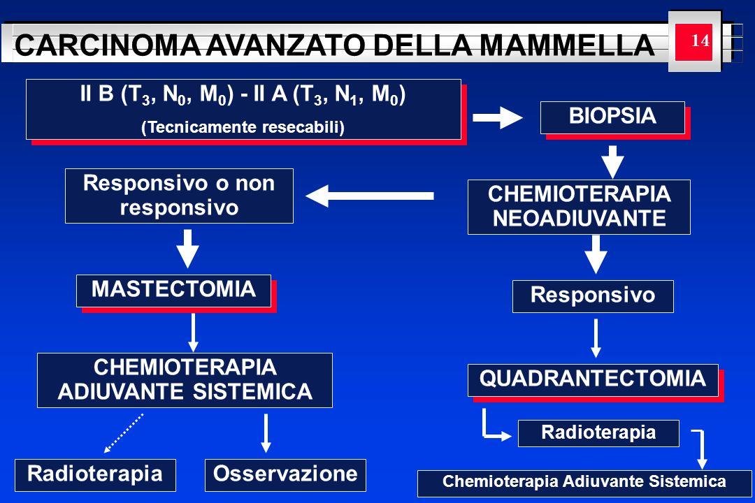 YOUR LOGO HERE CARCINOMA AVANZATO DELLA MAMMELLA 14 II B (T 3, N 0, M 0 ) - II A (T 3, N 1, M 0 ) (Tecnicamente resecabili) II B (T 3, N 0, M 0 ) - II