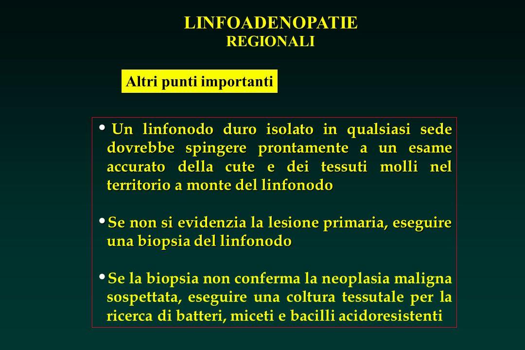 LINFOADENOPATIE REGIONALI Altri punti importanti Un linfonodo duro isolato in qualsiasi sede dovrebbe spingere prontamente a un esame accurato della c