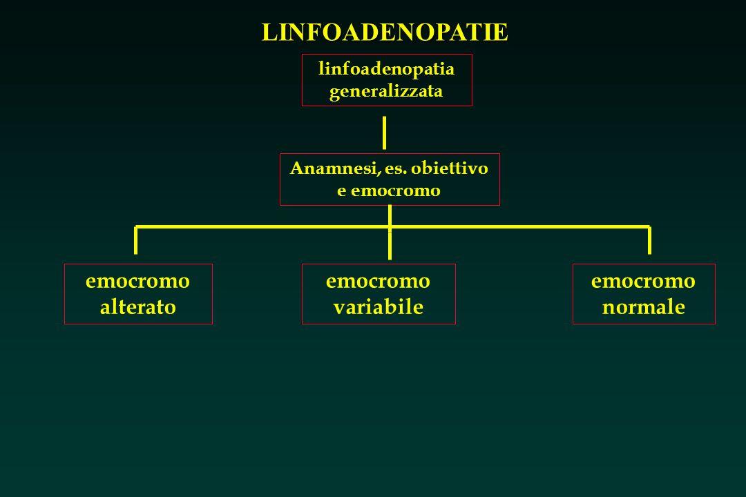 LINFOADENOPATIE linfoadenopatia generalizzata Anamnesi, es. obiettivo e emocromo emocromo alterato emocromo variabile emocromo normale