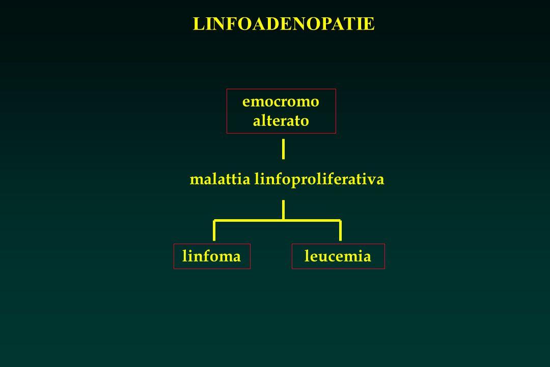 LINFOADENOPATIE emocromo alterato malattia linfoproliferativa leucemialinfoma