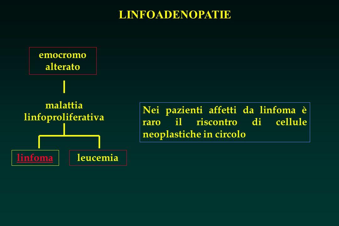 LINFOADENOPATIE emocromo alterato malattia linfoproliferativa leucemialinfoma Nei pazienti affetti da linfoma è raro il riscontro di cellule neoplasti