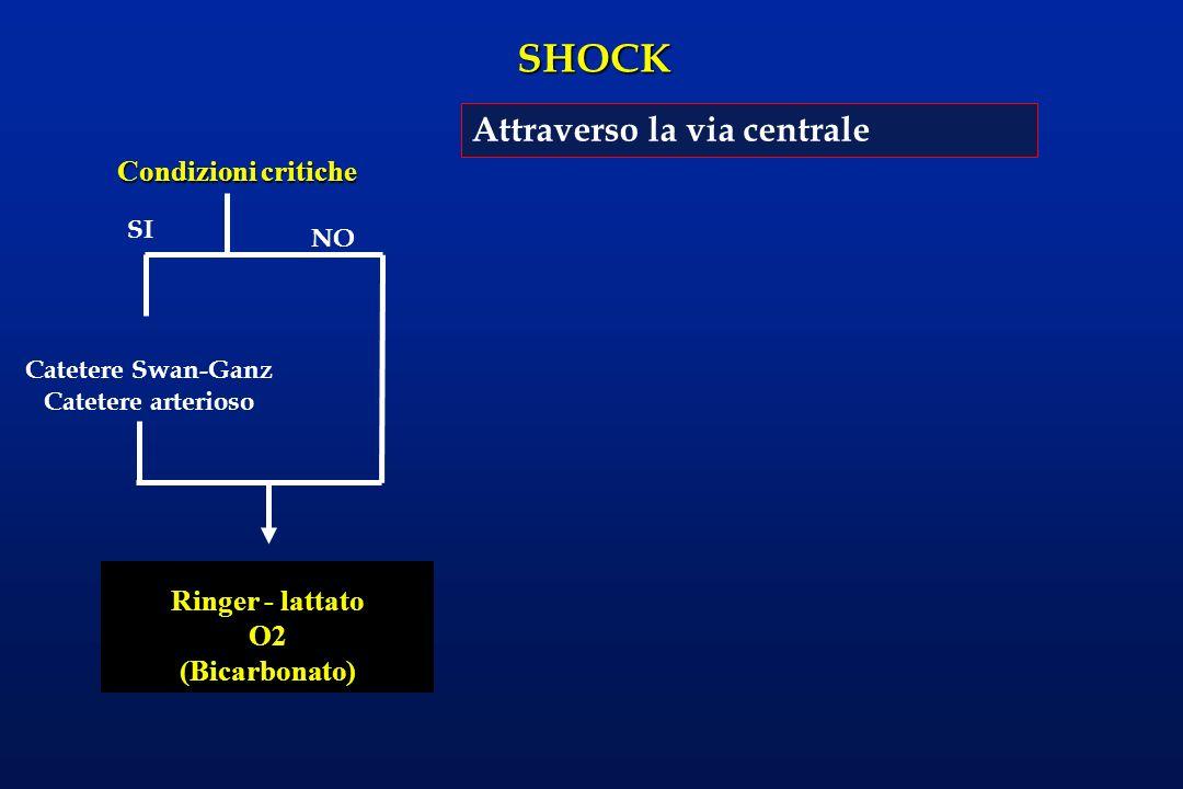 SHOCK Catetere Swan-Ganz Catetere arterioso Condizioni critiche SI NO Ringer - lattato O2 (Bicarbonato) Attraverso la via centrale