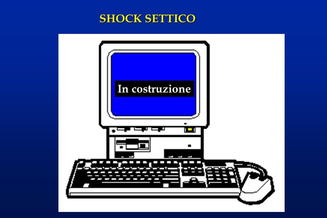 SHOCK SETTICO In costruzione