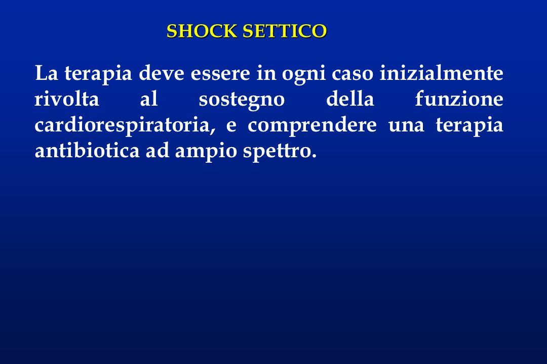 SHOCK SETTICO La terapia deve essere in ogni caso inizialmente rivolta al sostegno della funzione cardiorespiratoria, e comprendere una terapia antibi