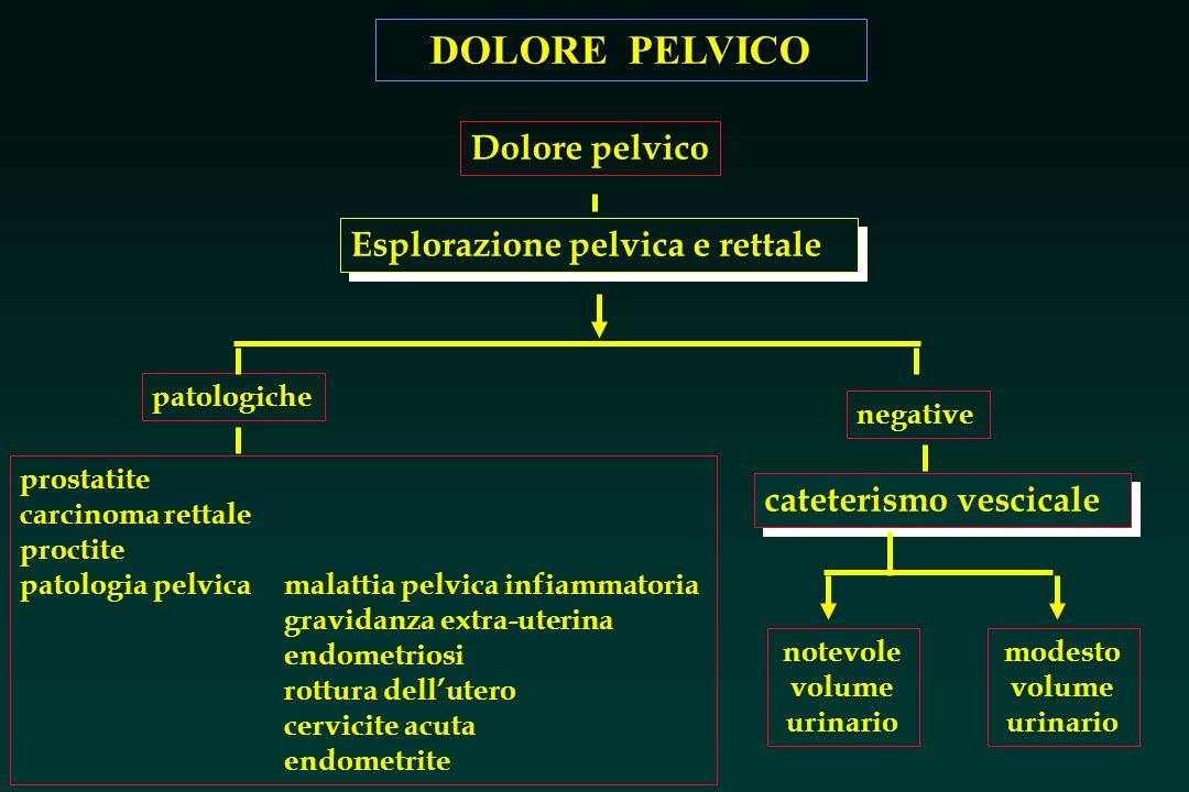 DOLORE PELVICO Esplorazione pelvica e rettale Lipogastrio, o regione sovrapubica, è larea dove si localizza il dolore nelle lesioni della pelvi o delle strutture dellintestino terminale.