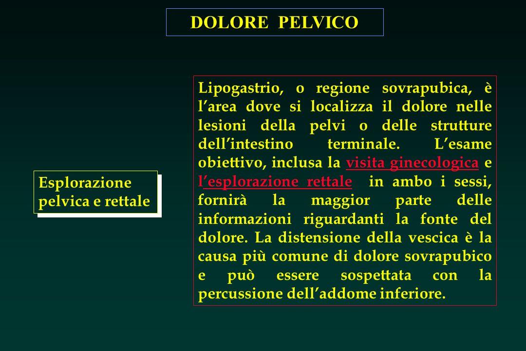 DOLORE PELVICO Esplorazione pelvica e rettale Lipogastrio, o regione sovrapubica, è larea dove si localizza il dolore nelle lesioni della pelvi o dell