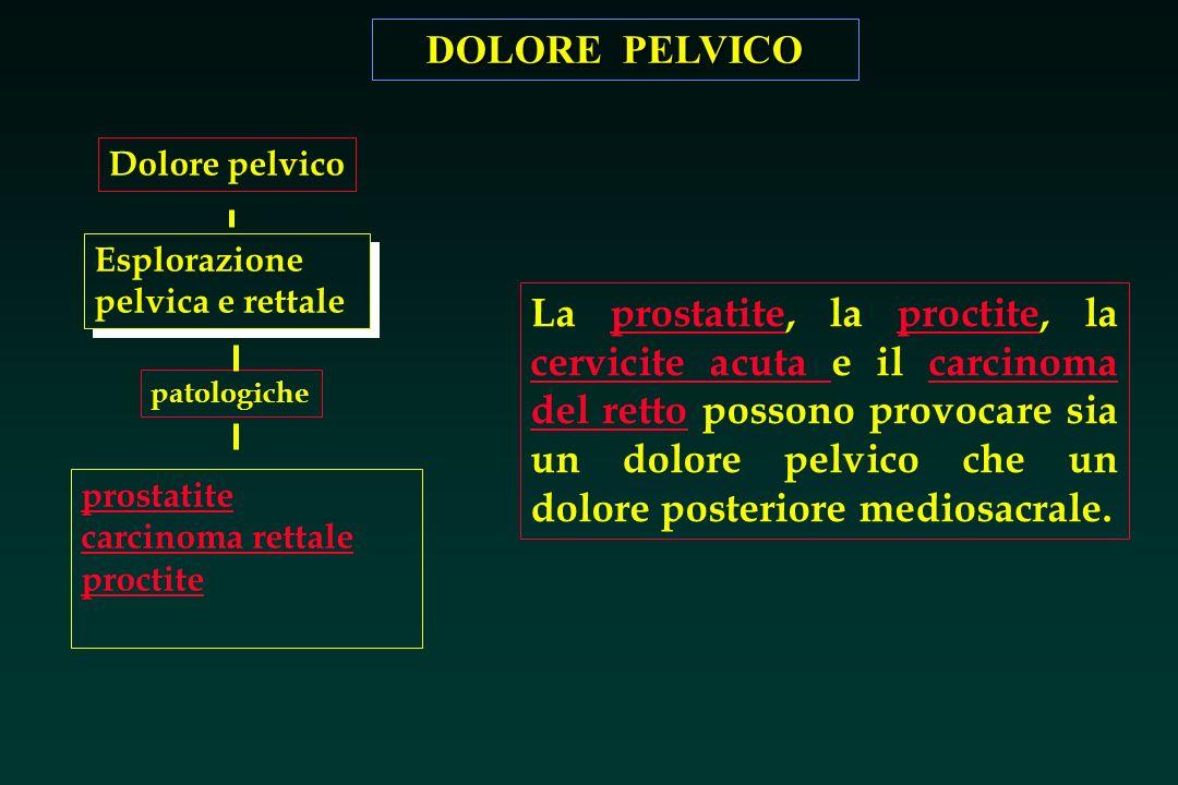 DOLORE PELVICO Esplorazione pelvica e rettale patologiche prostatite carcinoma rettale proctite Dolore pelvico La prostatite, la proctite, la cervicit