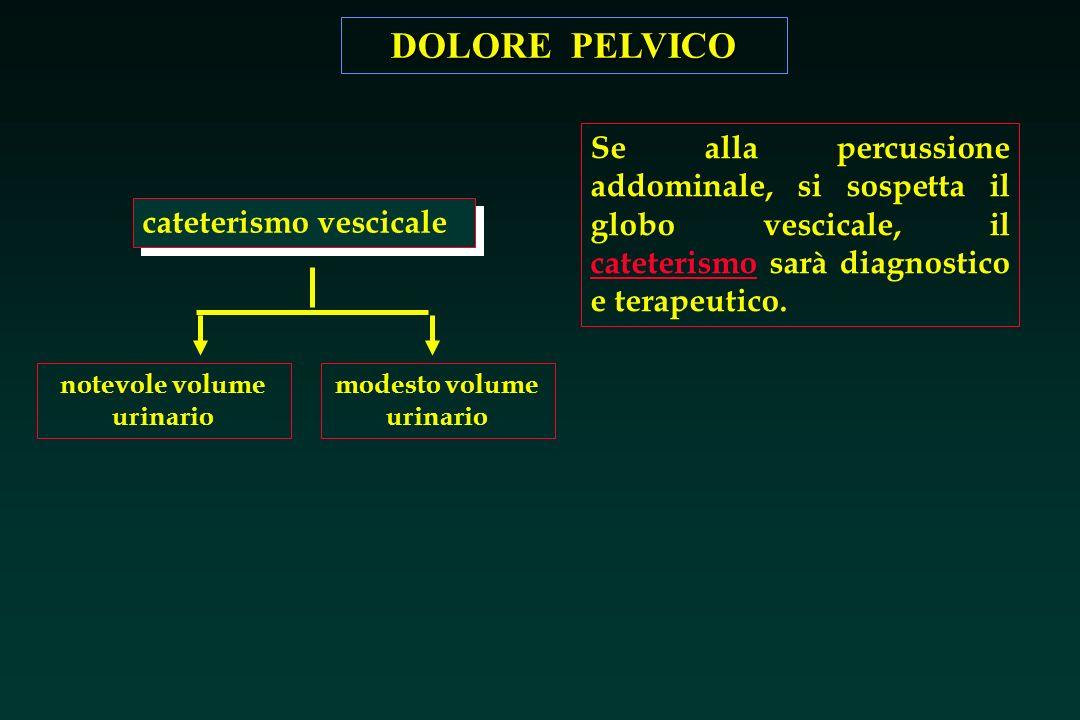 DOLORE PELVICO cateterismo vescicale notevole volume urinario modesto volume urinario Se alla percussione addominale, si sospetta il globo vescicale,