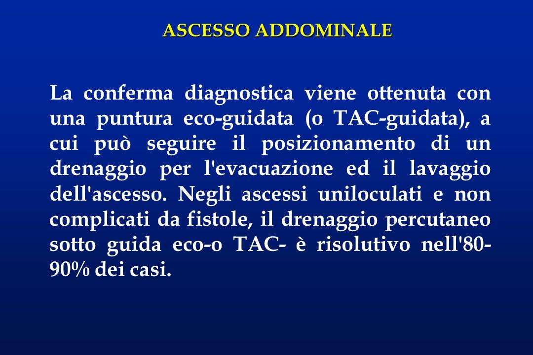 ASCESSO ADDOMINALE La conferma diagnostica viene ottenuta con una puntura eco-guidata (o TAC-guidata), a cui può seguire il posizionamento di un drena