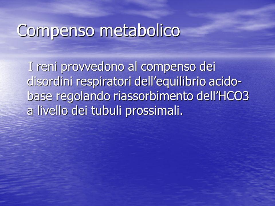 Compenso metabolico I reni provvedono al compenso dei disordini respiratori dellequilibrio acido- base regolando riassorbimento dellHCO3 a livello dei tubuli prossimali.