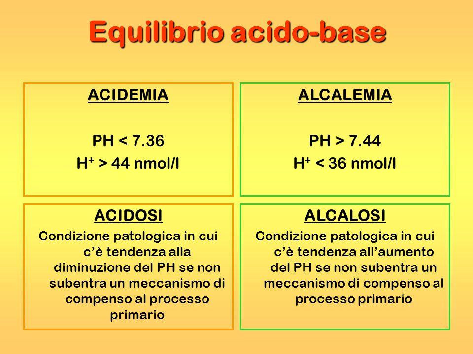 Equilibrio acido-base ACIDEMIA PH < 7.36 H + > 44 nmol/l ALCALEMIA PH > 7.44 H + < 36 nmol/l ACIDOSI Condizione patologica in cui cè tendenza alla dim