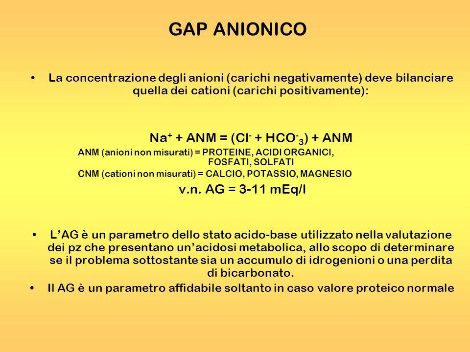 GAP ANIONICO La concentrazione degli anioni (carichi negativamente) deve bilanciare quella dei cationi (carichi positivamente): Na + + ANM = (Cl - + H