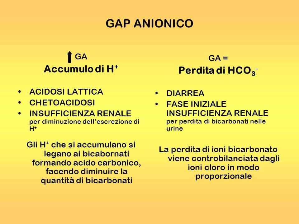 GAP ANIONICO GA Accumulo di H + ACIDOSI LATTICA CHETOACIDOSI INSUFFICIENZA RENALE per diminuzione dellescrezione di H + Gli H + che si accumulano si l