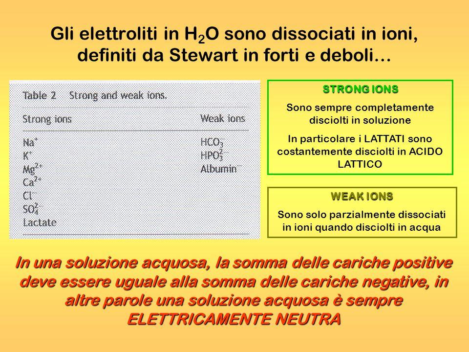 Gli elettroliti in H 2 O sono dissociati in ioni, definiti da Stewart in forti e deboli… STRONG IONS Sono sempre completamente disciolti in soluzione