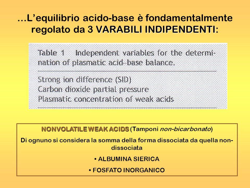 VARABILI INDIPENDENTI …Lequilibrio acido-base è fondamentalmente regolato da 3 VARABILI INDIPENDENTI: NONVOLATILE WEAK ACIDS NONVOLATILE WEAK ACIDS (T