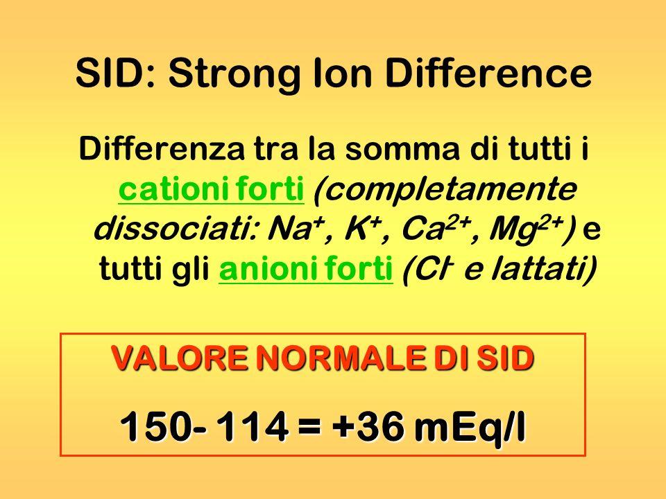 SID: Strong Ion Difference Differenza tra la somma di tutti i cationi forti (completamente dissociati: Na +, K +, Ca 2+, Mg 2+ ) e tutti gli anioni fo
