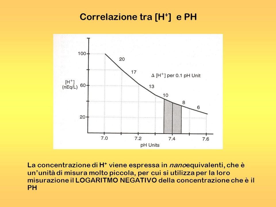 Correlazione tra [H + ] e PH La concentrazione di H + viene espressa in nanoequivalenti, che è ununità di misura molto piccola, per cui si utilizza pe