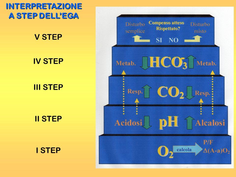 INTERPRETAZIONE A STEP DELLEGA I STEP III STEP II STEP IV STEP V STEP