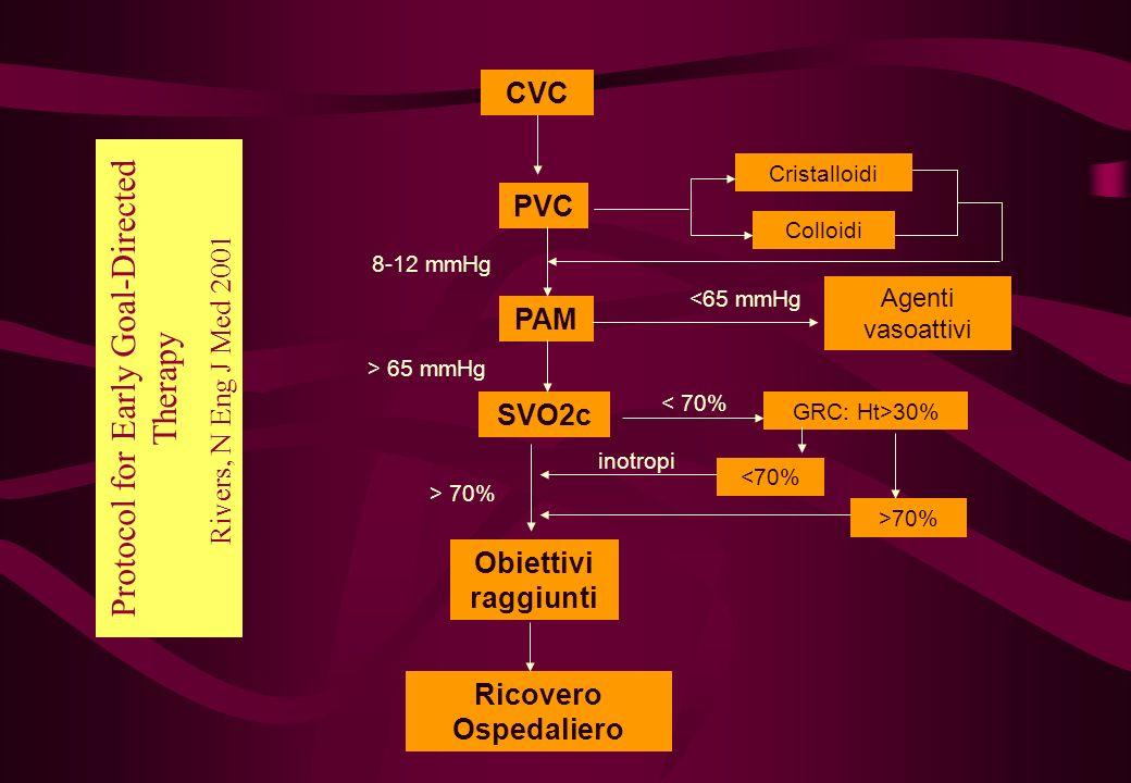 PAM Obiettivi raggiunti Ricovero Ospedaliero Agenti vasoattivi Cristalloidi Colloidi 8-12 mmHg <65 mmHg > 65 mmHg GRC: Ht>30% < 70% >70% inotropi > 70