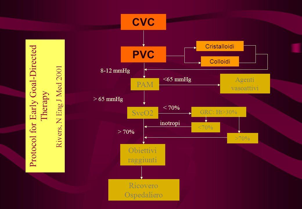 CVC PVC PAM SvcO2 Obiettivi raggiunti Ricovero Ospedaliero Agenti vasoattivi Cristalloidi Colloidi 8-12 mmHg <65 mmHg > 65 mmHg GRC: Ht>30% < 70% >70%