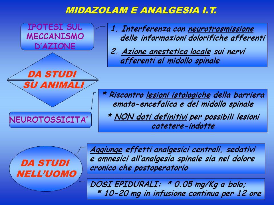 MIDAZOLAM E ANALGESIA I.T. NEUROTOSSICITA IPOTESI SUL MECCANISMO DAZIONE DA STUDI SU ANIMALI * Riscontro lesioni istologiche della barriera emato-ence