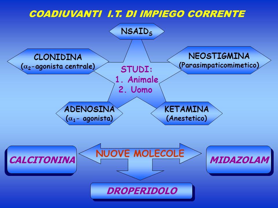 COADIUVANTI I.T. DI IMPIEGO CORRENTE NUOVE MOLECOLE CALCITONINA MIDAZOLAM DROPERIDOLO STUDI: 1. Animale 2. Uomo CLONIDINA ( 2 -agonista centrale) NEOS