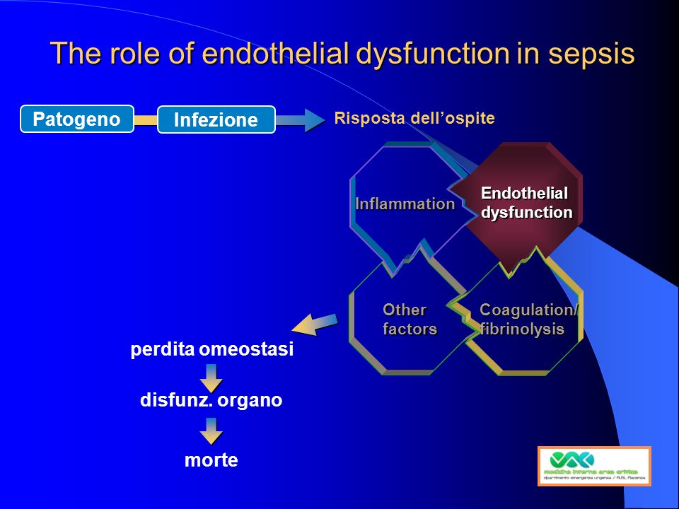 The role of endothelial dysfunction in sepsis perdita omeostasi disfunz.