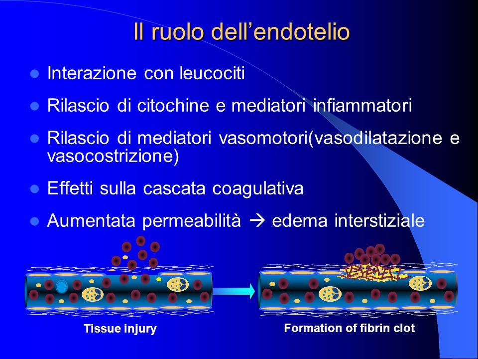 Interazione con leucociti Rilascio di citochine e mediatori infiammatori Rilascio di mediatori vasomotori(vasodilatazione e vasocostrizione) Effetti s