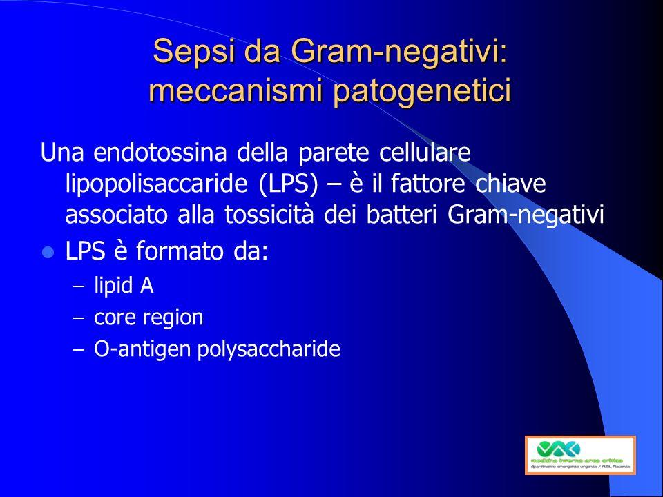 Sepsi da Gram-negativi: meccanismi patogenetici Una endotossina della parete cellulare lipopolisaccaride (LPS) – è il fattore chiave associato alla to