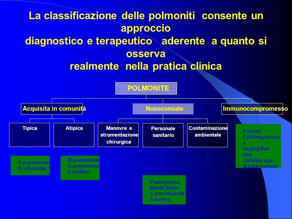 La classificazione delle polmoniti consente un approccio diagnostico e terapeutico aderente a quanto si osserva realmente nella pratica clinica Tipica