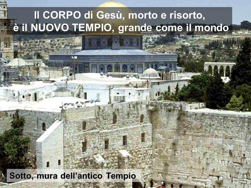 Nelle tre prossime domeniche di quaresima abbiamo tre temi chiave del vangelo di S. Giovanni Il vecchio Tempio sarà distrutto, prima che il Nuovo sia