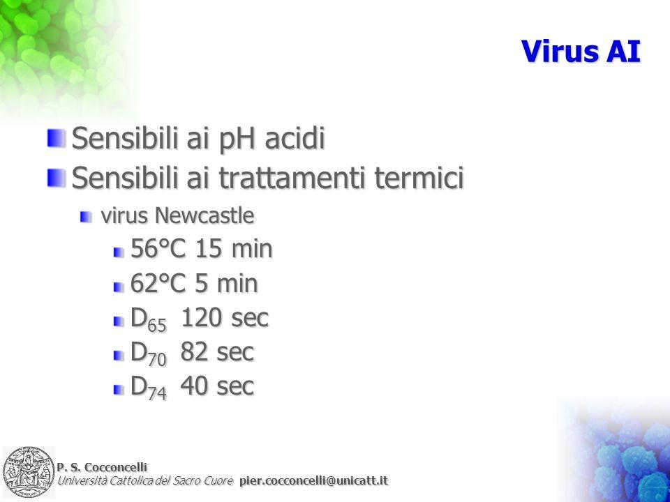 P. S. Cocconcelli Università Cattolica del Sacro Cuore pier.cocconcelli@unicatt.it Virus AI Sensibili ai pH acidi Sensibili ai trattamenti termici vir