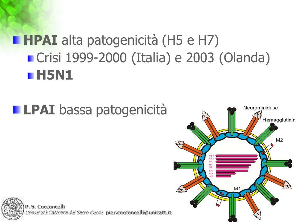 P. S. Cocconcelli Università Cattolica del Sacro Cuore pier.cocconcelli@unicatt.it HPAI alta patogenicità (H5 e H7) Crisi 1999-2000 (Italia) e 2003 (O