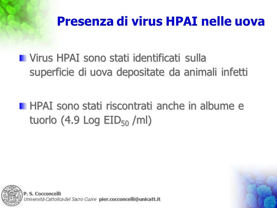P. S. Cocconcelli Università Cattolica del Sacro Cuore pier.cocconcelli@unicatt.it Presenza di virus HPAI nelle uova Virus HPAI sono stati identificat