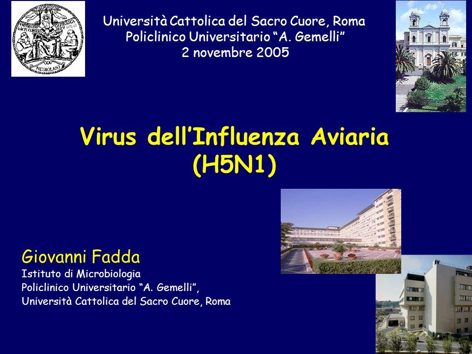 Virus dellInfluenza Aviaria (H5N1) Università Cattolica del Sacro Cuore, Roma Policlinico Universitario A. Gemelli 2 novembre 2005 Giovanni Fadda Isti