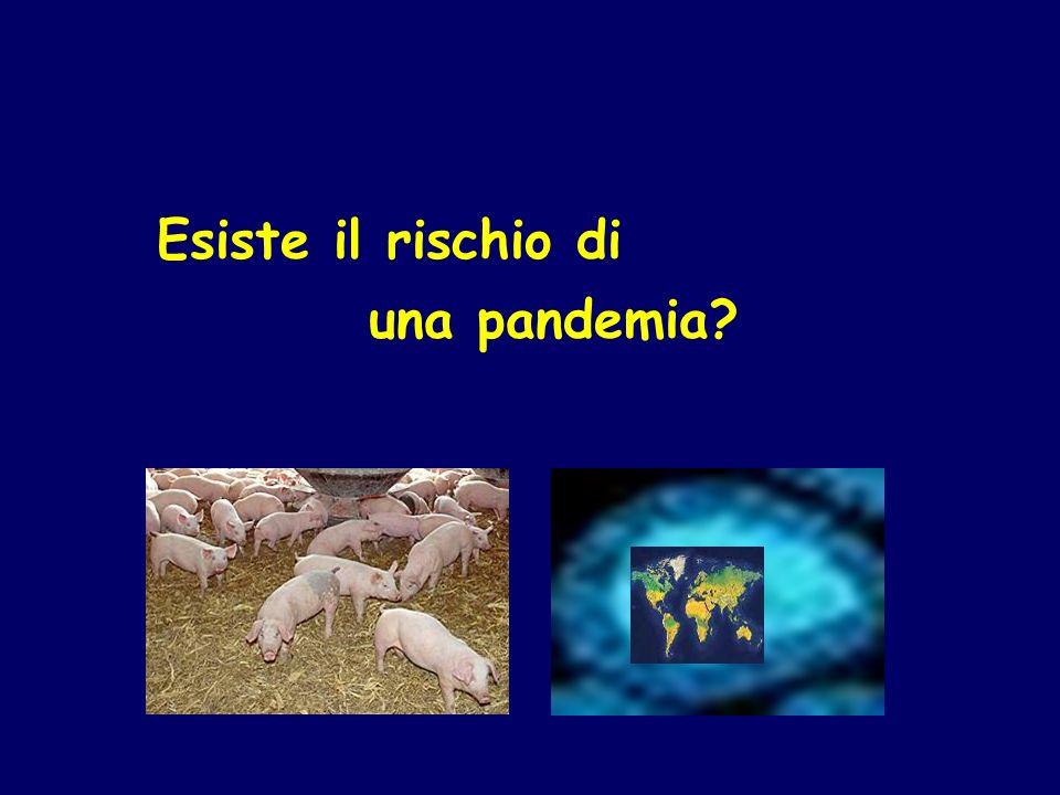 Esiste il rischio di una pandemia?