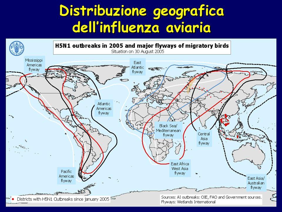 Distribuzione geografica dellinfluenza aviaria